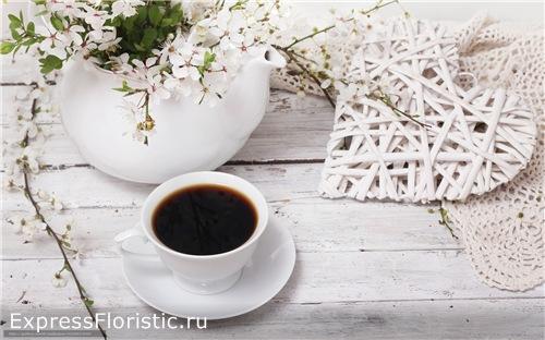 Какие цветы любят кофе